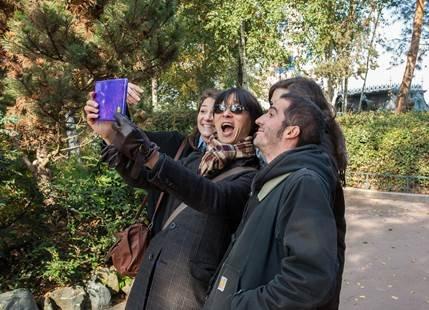 Les Coqs en Pâte - Animations Interactives