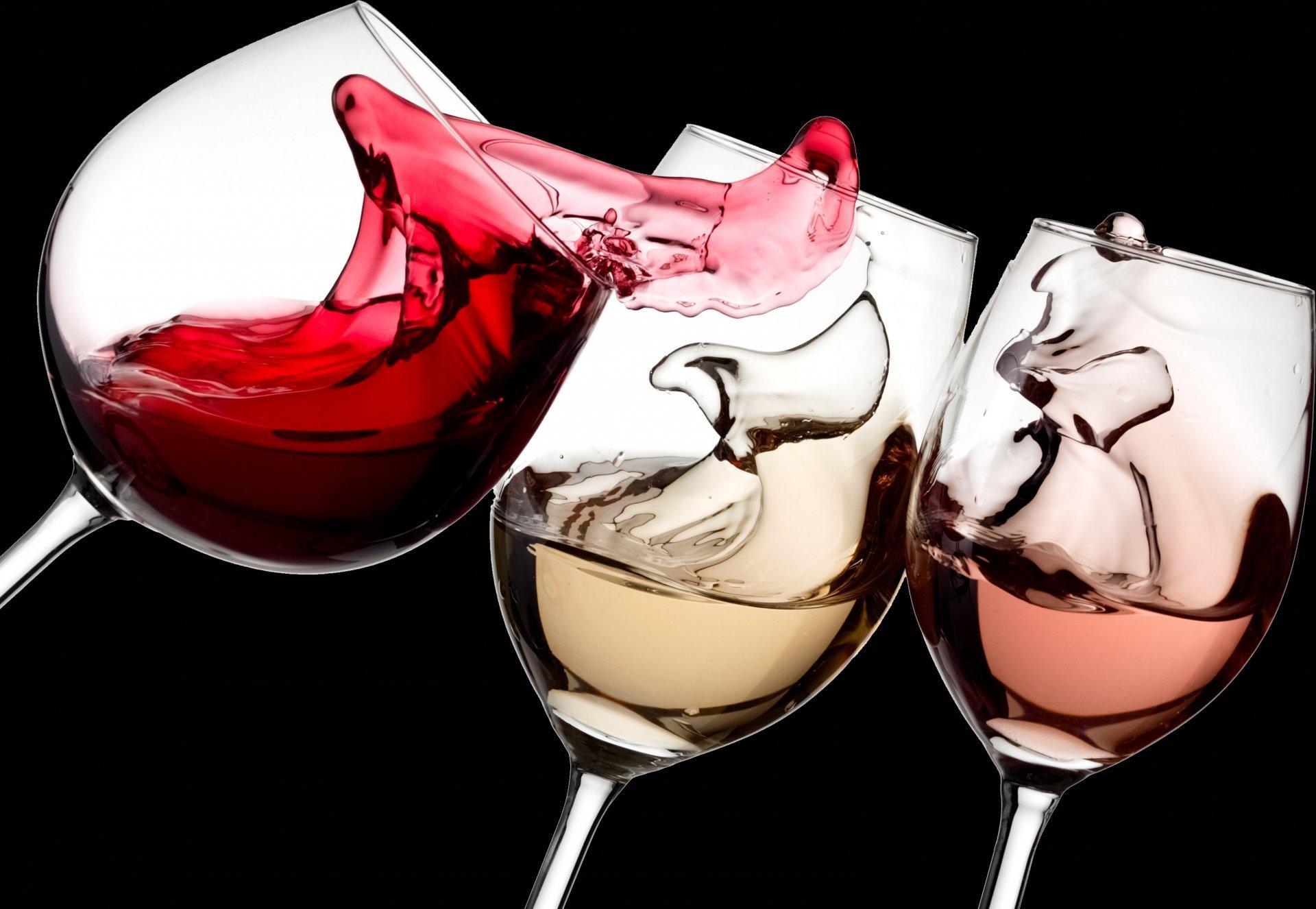 Vino Cado - Animations Oenologiques