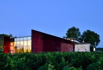 Repas entreprise au cœur des vignes, restaurant groupe Saint-Emilion 33