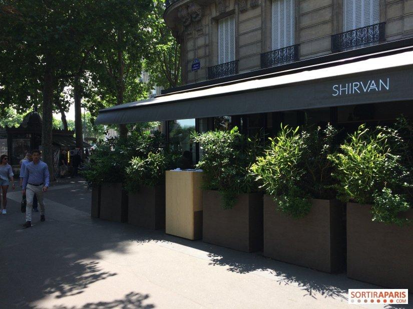 Shirvan Cafe Metisse Paris