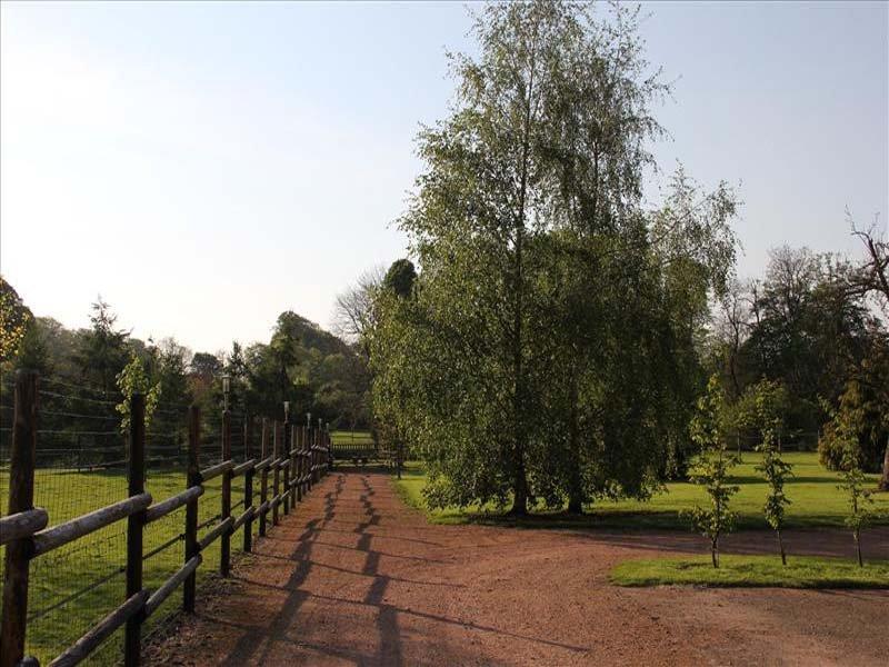 Photos de profil pour les sites de rencontres